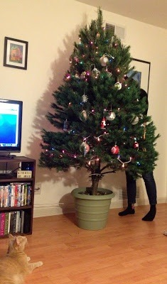 sturdy diy christmas tree stand now your tree should be nice and sturdy and you can get started decorating your tree