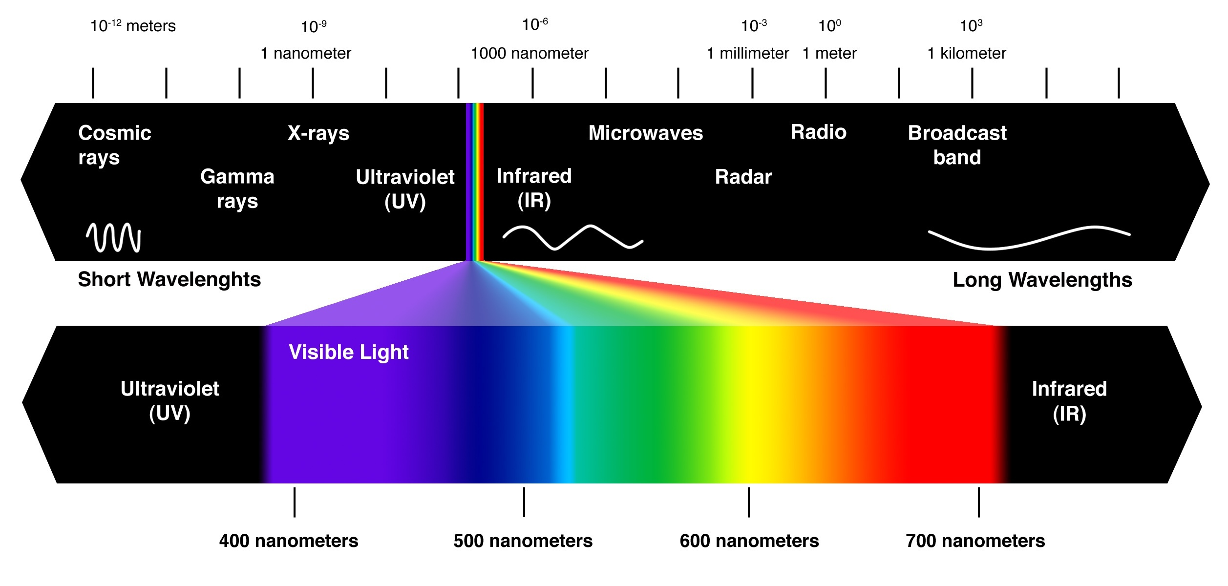 What Percentage Of The Light Spectrum Are Humans Able To See