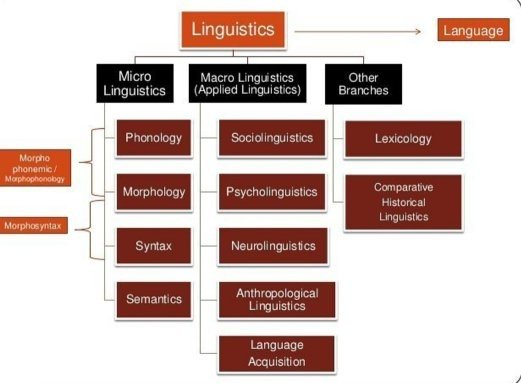 Phd thesis in applied linguistics