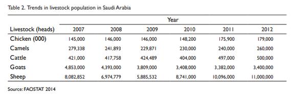 What does Saudi Arabia produce? - Quora