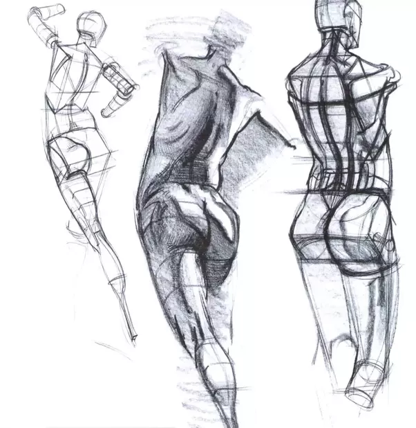 How to draw the human figure from imagination - Quora