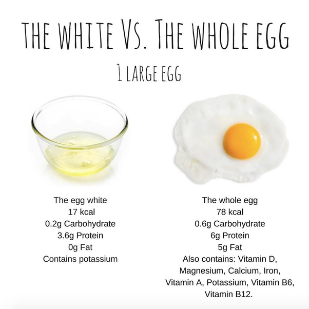 Are Egg Yolks Good Protein Quora