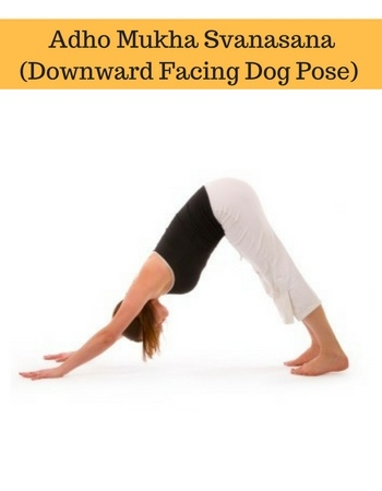 hi i am new to yoga can you please tell me some basic