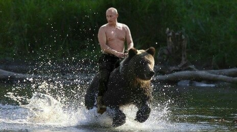 Image result for shirtless putin sochi hotels