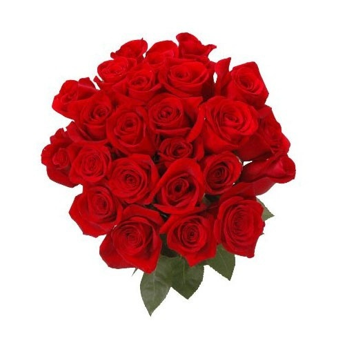 how much does a dozen roses typically cost in chennai quora