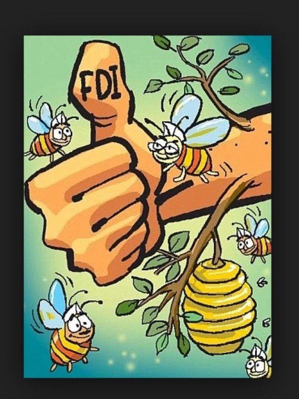 pros and cons of fdi in insurance on india Pros: cons/anti arguments: lic has a big network of agents and offices but private insurance companies don't hence bancassurance system helps the private insurance companies to utilize the big network and manpower of a bank without much investment.