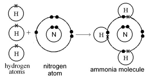 how would a 3 hydrogen atom bond with 1 nitrogen atom covalently
