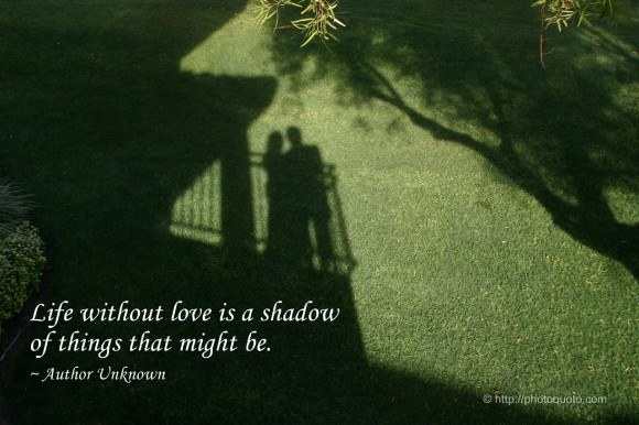 What Does This Quote Mean Mesmerizing Life Without Love Is A Shadow Of Things That Might Be' What Does