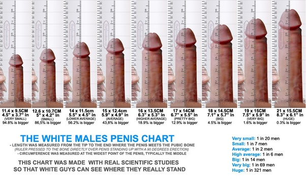 Small penis pictures normal not