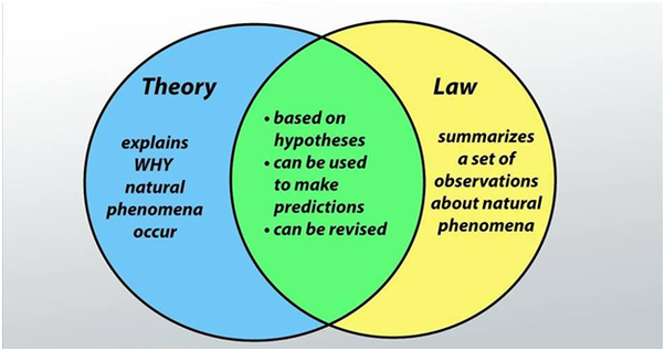difference between fact and law