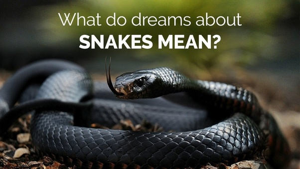 What does it mean when I dream that a snake is biting my