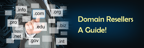 domaining guide how to profit from domain names