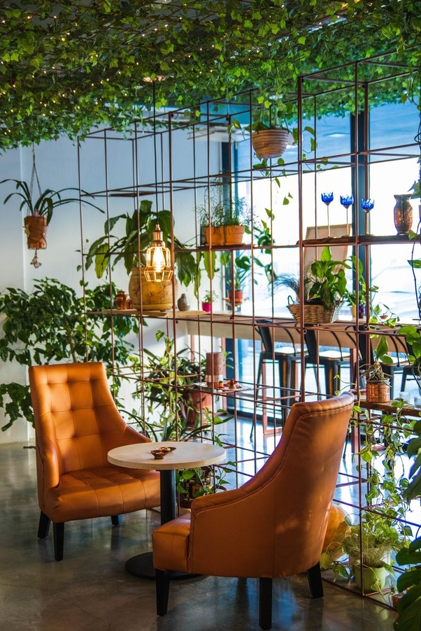 Can I Get A Budget Interior Designer In Noida Quora