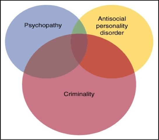 psychopathy and sociopathy essay Psychopathy and sociopathy are anti-social personality disorders while both these disorders are the result of an interaction between genetic predispositions and environmental factors, psychopathy is used when the underlying cause leans towards the hereditary sociopath is the term used when the.