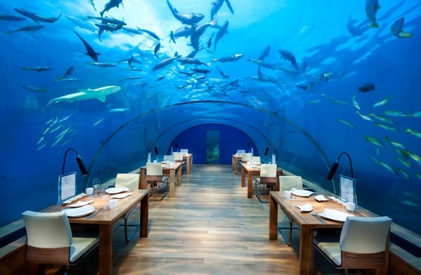 How Much Would A 1 Week Trip To Maldives Cost 2 Adults 2