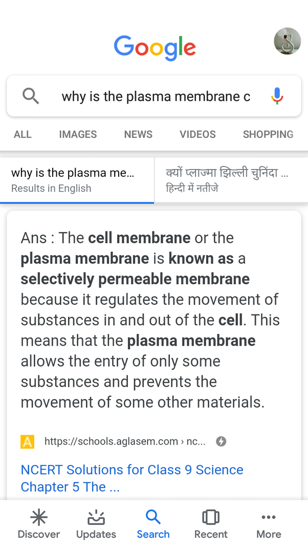 Why is the plasma membrane called a