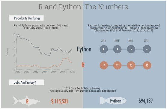 coding for beginners using python pdf