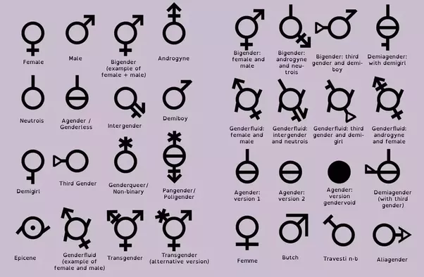 why do people who believe there are only two genders accuse others