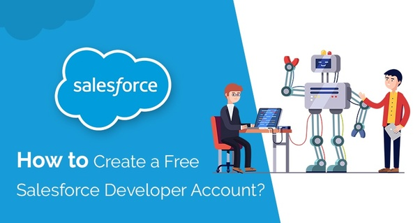 What are the limitations of a Salesforce free developer's