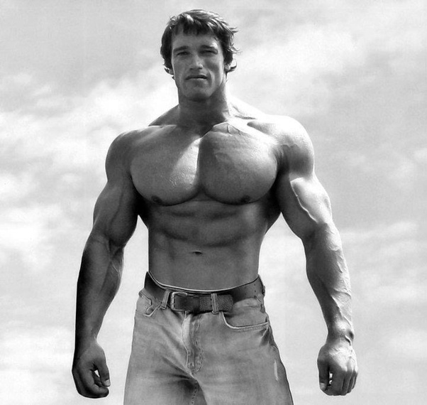 Can I build a similar chest to Arnold Schwarzenegger's ...