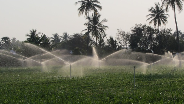 How Much Does The Sprinkler Irrigation System Cost Quora