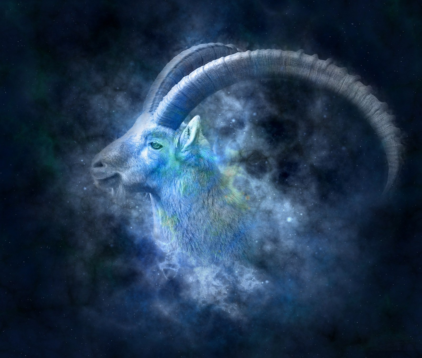 Does Capricorn rising mean very shy? - Quora