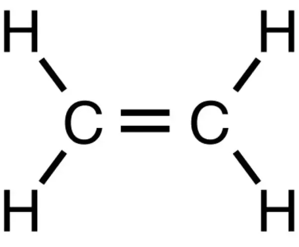 How is the structural formula for C2H4 determined? - Quora C2h4 Structure