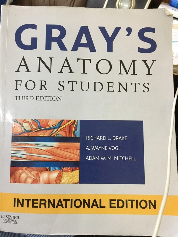 Which Is The Best Edition Of Grays Anatomy For Students Quora