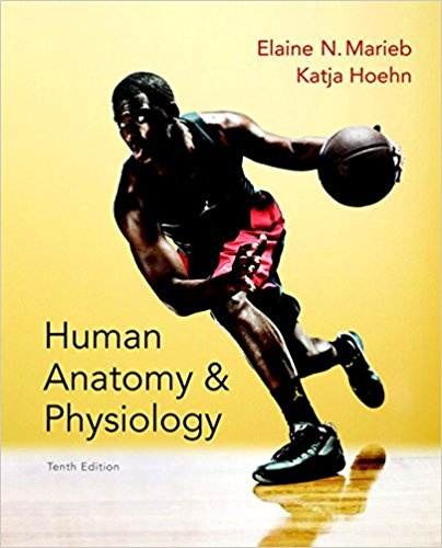 How to download a test bank for Human Anatomy and Physiology 10th ...