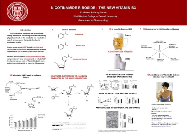 What Is The Difference Between Nicotinamide Riboside And