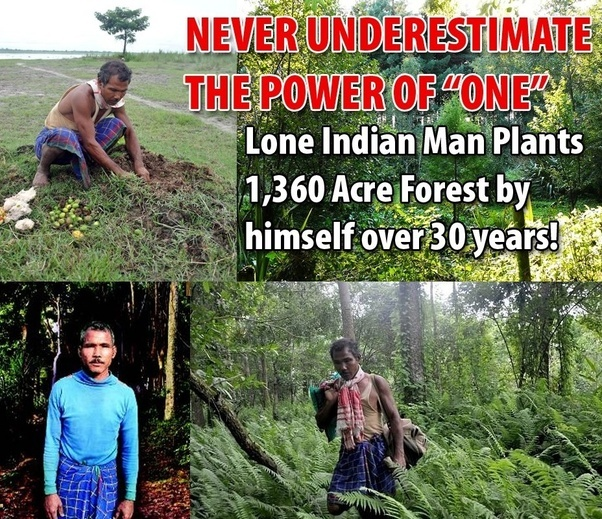 Indian man single handedly plants entire forest