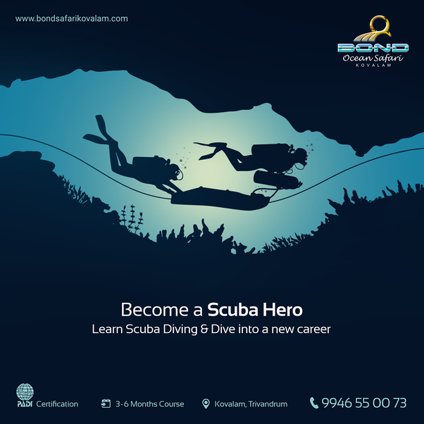 How to make a career in scuba diving in India - Quora
