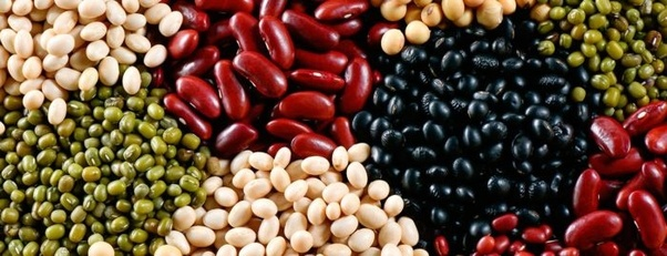 Image result for tipos de frijoles en mexico