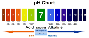 According To The Ph Chart As We Move Closer 14 Basic Alkaline Nature Increases So Blood Having Value 9 0 Is More Than Of