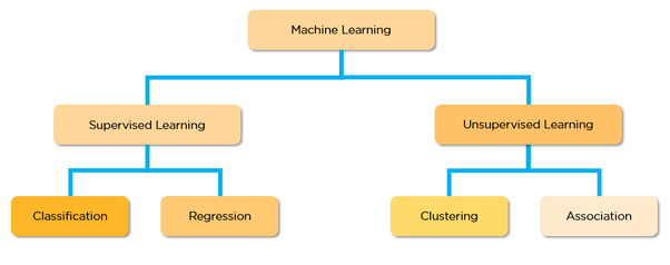 What are the different types of Machine Learning Algorithms