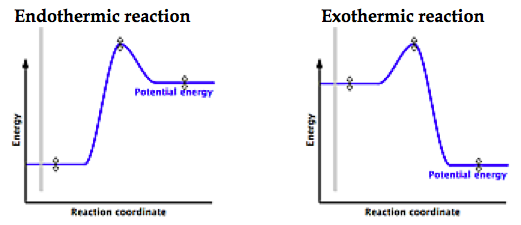 How are exothermic and endothermic graphs designed? - Quora