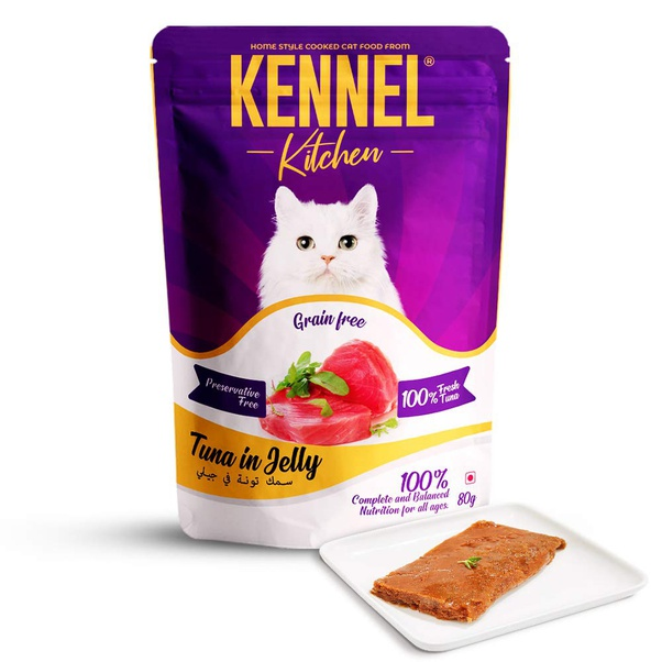 What Indian Home Food Can I Give To My Kitten Which Can Be Made In Wet Food Form Quora
