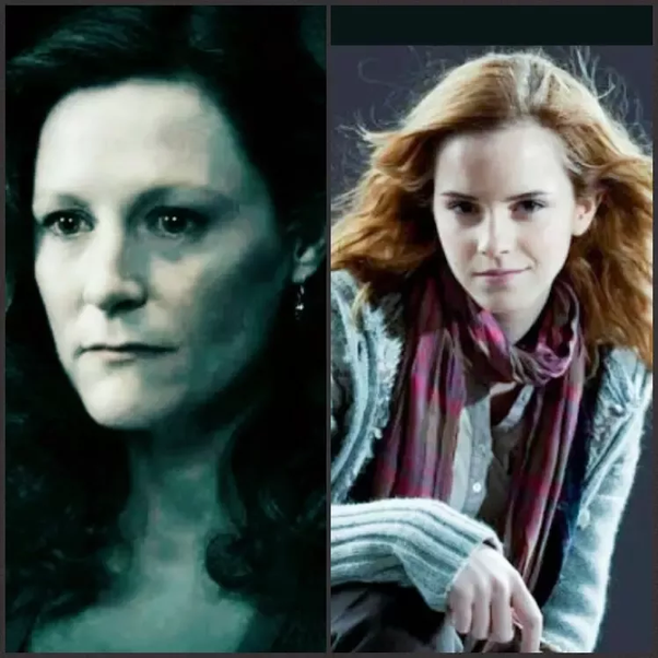 Could we say that Hermione was a reflection of Lily Potter
