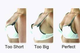 sized Photos of breasts perfect