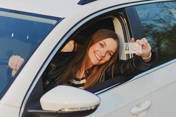 DMV Status Check For Registration, Driver's …