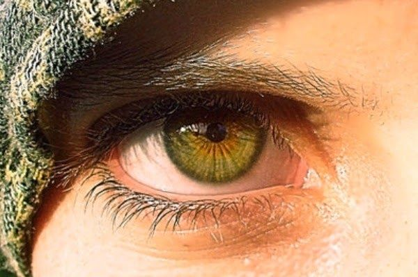 What S The Difference Between Amber Light Brown And Hazel