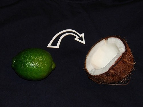 What Is The Meaning Of The Lyric Lime In The Coconut Quora