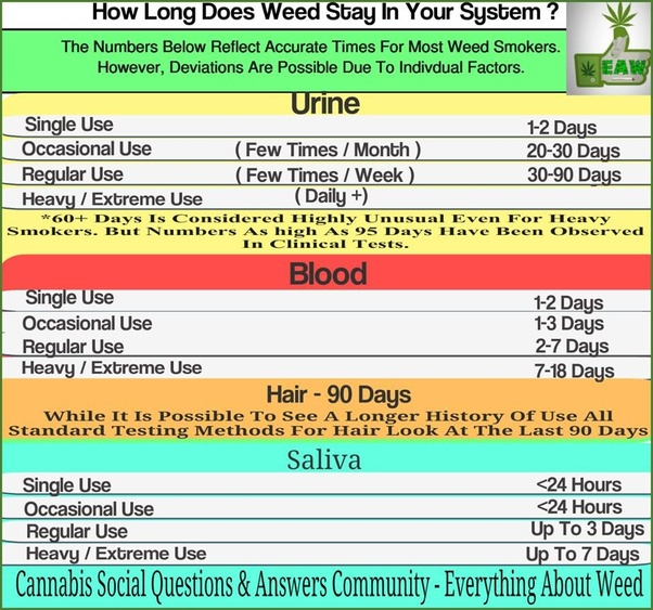 671f8d61aa56e5 So how long does weed stay in your system? The most common way to test for  THC, the primary psychoactive found in cannabis, is via simple urine  testing.