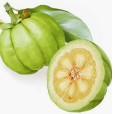 What Is Garcinia Cambogia Fruit Called In Hindi Quora