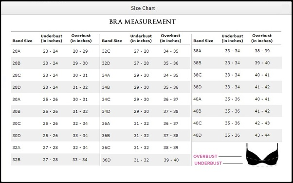 df6cd3bffef ... Bra size calculator just give 2 information about your band size and  bust size both in centimeter then get your bra size without any tape.