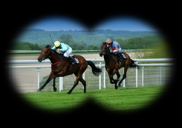 What is a great strategy for horse race betting? - Quora