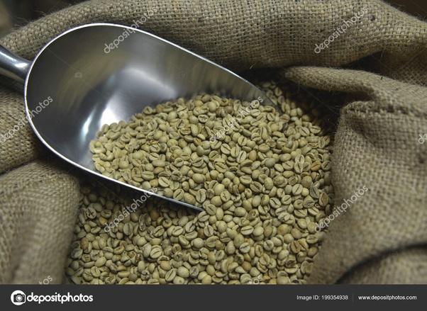 chicco di caffè verde massimo prezzo migliore