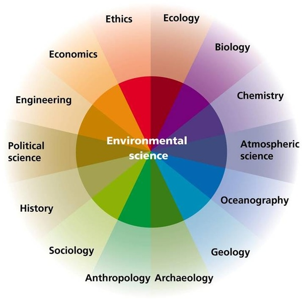 What is the relationship between environmental science and environmental  health? - Quora