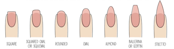 This Is A Guide Of The More Popular Nail Shapes