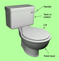 How to clean a dirty toilet - Quora